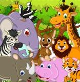 Djur djurlivtecknad film med tropisk skogbakgrund Arkivfoto
