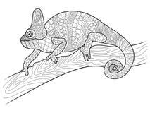 Djur färgläggningbok för kameleont för vuxen människavektor Royaltyfri Bild
