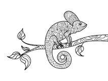 Djur färgläggningbok för kameleont för vuxen människavektor Arkivbild