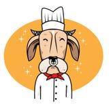 Djur för kock för kokocktecknad film Royaltyfri Illustrationer