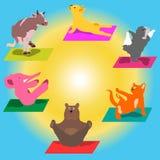 Djur gör yoga Royaltyfri Illustrationer