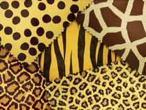 Djur hud för blandning Arkivbilder