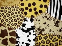 Djur hud för blandning Arkivbild
