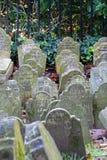 Djur kyrkogård Arkivfoto