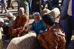 Djur marknad i Marocko, mäns fynd Royaltyfri Foto