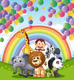 Djur nedanför de sväva ballongerna och regnbågen Arkivfoton