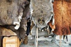 Djur päls på skärm på Riga jul marknadsför Royaltyfria Foton