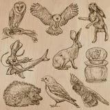 Djur runt om världen (del 17) Hand dragen vektorpacke Arkivbild