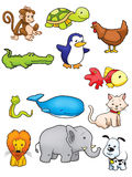 djur samling Royaltyfria Bilder