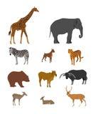 Djur samling för djurliv på vit bakgrund stock illustrationer