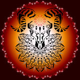 Djur skalle med horn Royaltyfria Bilder