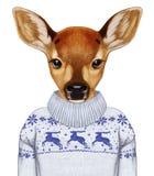 Djur som en människa Stående av Fawn i tröja Arkivfoto