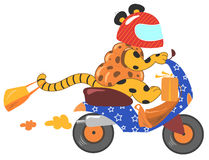 djur som kör den roliga sparkcykelvespaen vektor illustrationer