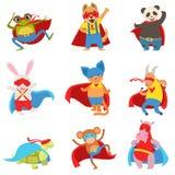 Djur som kläs som Superheroes med uddar och maskeringsuppsättningen Arkivbild