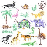 djur ställde in wild Färgpenna som unges den utdragna giraffet för hand, elefant, lejon, apa, sebra, krokodil som isoleras på vit royaltyfri fotografi