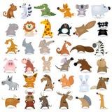 djur stor tecknad film Fotografering för Bildbyråer