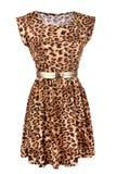 Djur tryckklänning med det guld- bältet Arkivfoto