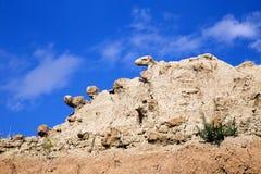 Djura huvud av vaggar att kika över klippan i Badlandsmedborgaremedeltal royaltyfria foton