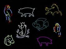 djura neontecken Fotografering för Bildbyråer