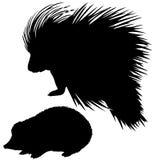 djura silhouettes royaltyfri illustrationer