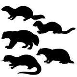 djura silhouettes Arkivbilder