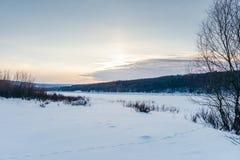 Djura spår i vintersnön Royaltyfria Foton