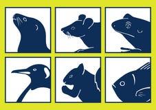 djura symboler Royaltyfri Bild