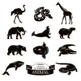 djura symboler ställde in Royaltyfri Bild