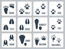 Djuret spårar vektorsymboler Arkivbild