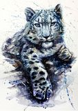 Djurliv för djur för vattenfärg för snöleopard rovdjurs- Fotografering för Bildbyråer