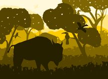 Djurliv med djur bakgrund och natur stock illustrationer
