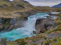 Djurliv och natur på Parque Torres del Paine, Chile, Patagonia royaltyfri bild