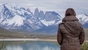 Djurliv och natur på Parque Torres del Paine, Chile, Patagonia arkivbild