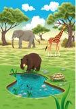 djurnatur vektor illustrationer