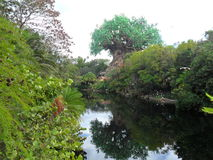 Djurriket - Walt Disney World Parks och resosrts - sjö Arkivbild