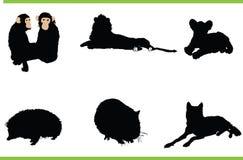 djursamlingsvektor Arkivfoto