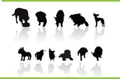 djursamlingsvektor Arkivbild