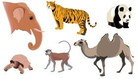 djurset stock illustrationer