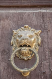 Djursymboler i archutecture Royaltyfri Bild