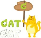 Djurt alfabet c med katten Royaltyfri Fotografi