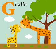 Djurt alfabet för ungarna: G för giraffet Fotografering för Bildbyråer