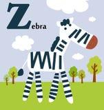 Djurt alfabet för ungarna: Z för Zebraven Arkivfoton