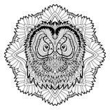 Djurt begrepp planlägg linjen Huvudet av en uggla Arkivbilder
