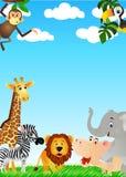 djurt roligt wild Arkivfoto