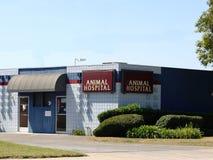 djurt sjukhus Arkivfoto