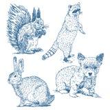 Djurteckningsuppsättning stock illustrationer