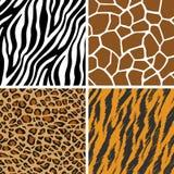 Djuruppsättning - giraff, leopard, tiger, sömlös modell för sebra vektor illustrationer