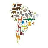 Ödla för ara för jaguar för tvättbjörn för Maned varg för delfin för apa för manatee för boa för bältdjur för skyddsremsa för päl Arkivfoton