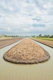 Dla jarzynowej kultywaci przygotowanie glebowa ziemia Obrazy Stock