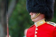 Dla królowej i kraju Zdjęcia Royalty Free